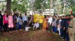 Tree plantation in Kamala college on 1 July 2018