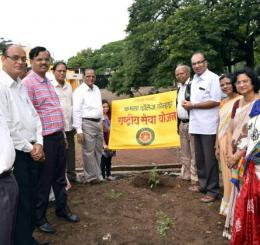Tree plantation in July 2017 Activities